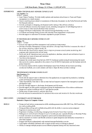 Technology Senior Consultant Resume Samples Velvet Jobs