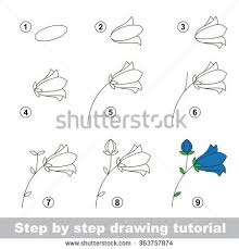 Small Picture The 25 best How to draw flowers ideas on Pinterest Flowers to