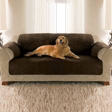 pets furniture. Pets Furniture