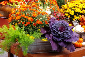Fall Landscaping Fall Landscaping Ideas 2920