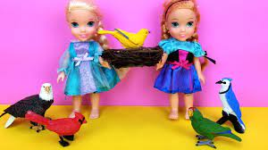 Elsa and Anna toddlers SAVE a bird ! Aviary - Barbie is the pet doctor -  park - vet - YouTube