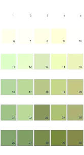 what color is sage. Best Green Paint Colors Sage Color Samples Ideas On Palette Soothing For Bedroom What Is