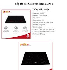 Bếp đôi điện từ Goldsun BB1202MT