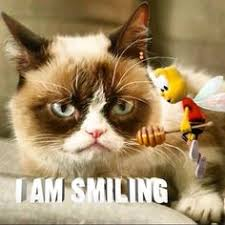 grumpy cat i am smiling. Fine Cat Grumpy Cat Posted By Candice Marie With Cat I Am Smiling