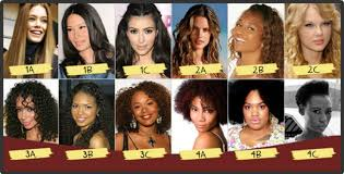 Hair Type Chart What Is Your Hair Type