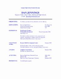 Resume Format For Experienced Accountant Pdf New Download