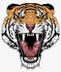tiger face transpa png tiger