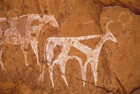 tassili du kozen roof of shallow cave paintings of cattle facing right superimposed on