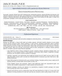 Free Executive Resume Templates Mesmerizing 48 Free Executive Resume Templates PDF DOC Free Premium