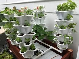 ezgro original hydroponic amazing hydroponic systems for indoor gardening