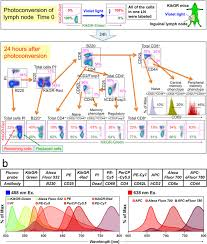 Novel Full Spectral Flow Cytometry With Multiple Spectrally