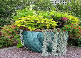 Stunning Outdoor Planter Ideas Design Porcelain Planters Seem To Be Quite  Popular In Some Gardens