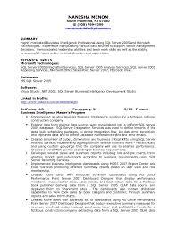 Bi Developer Resume 16