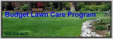 Budget Lawn Care Budget Lawn Program Turf King