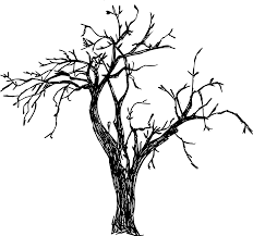 8 Tree Drawing Png Transparent Onlygfxcom