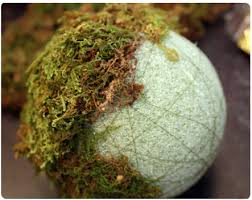 Decorating With Moss Balls DIY moss ball 53