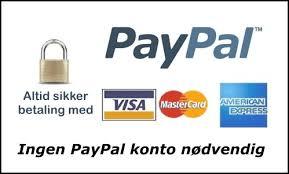 Billedresultat for sikker betaling