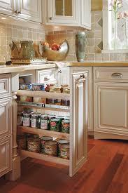storage best pull out storage bins unique kitchen cabinet organization s omega than modern