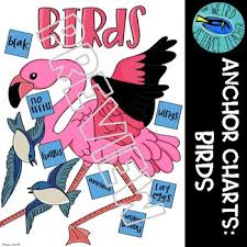 Science Classification Scaffolded Notes Anchor Chart Birds