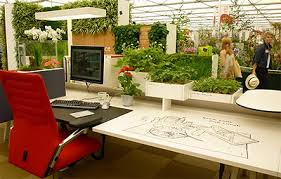 1000 Images About Plants In The Office On Pinterest  Green Office Office Plants And Apartment Guide  U