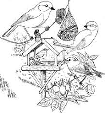 51 Best Coloring Images Print Coloring Pages Coloring Book Chance