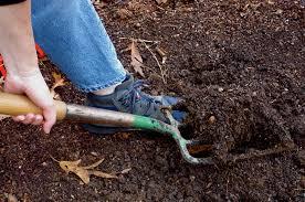 best soil for vegetable garden. best soil for vegetable garden e
