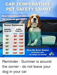 Car Temperature Pet Safety Chart How Long Does It Take For