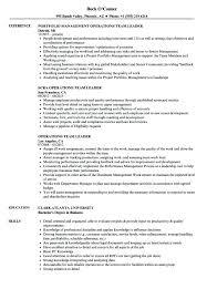 Resume For Team Leader In Bpo Team Leader Resume Example Emelcotest Com