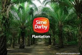 Sime Darby Plantation Organization Chart Marc Affirms Sime Darby Plantations Aaa Rating With Stable