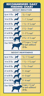 Dog Food Chart By Weight And Age Puppy Feeding Weight Online Charts Collection