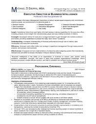 Business Analyst Resume Summary Lovely Writing A Business Cover