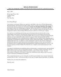 Insurance Underwriter Resume Resume Peppapp