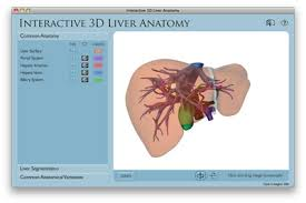 Liver Anatomy Virtual Liver 3d Liver Anatomy Hepatic Segments Surgery