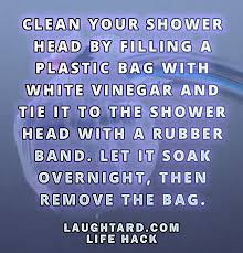 life to clean your shower head