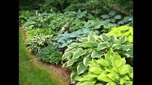 Small Picture Small shade garden design ideas YouTube