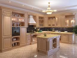 Renew Kitchen Cabinet Designs 13 Photos  Home Appliance  Kitchen   800x600