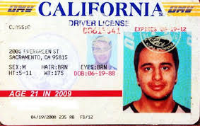 22 Confessions True Fake Ids About