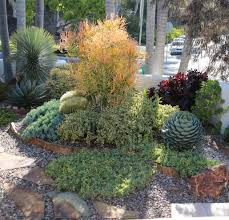 succulent garden design essentials
