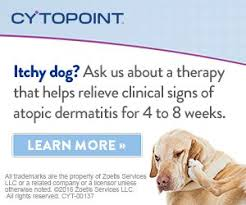 Attention Allergy Patients! CYTOPOINT has Arrived! - Pet Care Center