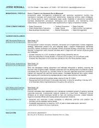 example business sales resume   free sample