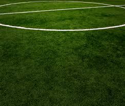 soccer field grass. Soccer Field Grass