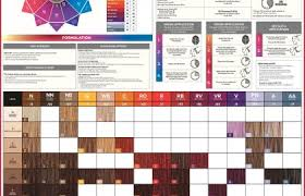 Paul Mitchell Color Swatch Book 12 Koe Movie Paul