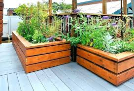 pressure treated lumber for raised garden beds wood for raised bed vegetable garden what kind of