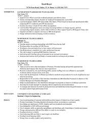 Warehouse Team Leader Resume Samples Velvet Jobs