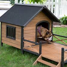 double dog house plans. Insulated Dog House Plans Beautiful Double Awesome Best 25 Ideas