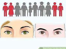 Hazel Eye Chart How To Predict Your Babys Eye Color 12 Steps With Pictures