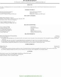 Simple Cv Format For Manager Position Construction Project Manager