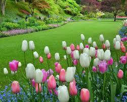 butchart gardens tours