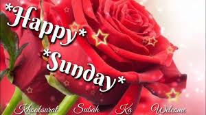 Beautiful Sunday Morning Video Happy Sunday Morning Wishes Video Quotes Greetings