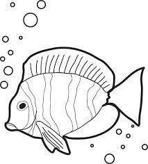 Ocean Fish Drawing At Getdrawingscom Free For Personal Use Ocean